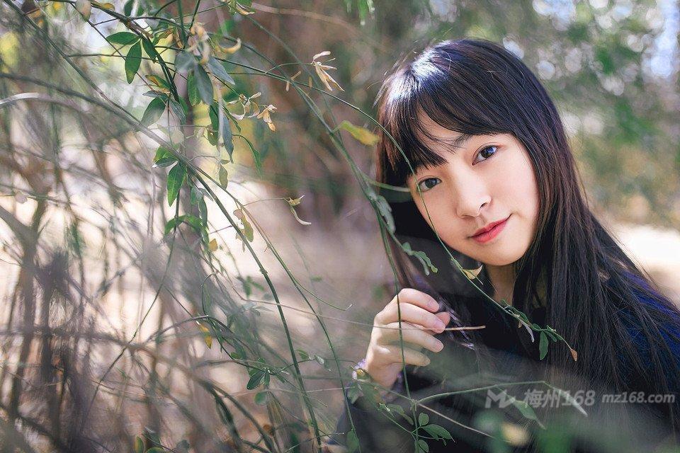 纯情少女丛林写真唯美动人
